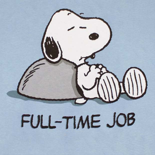 Snoopy Don't Work