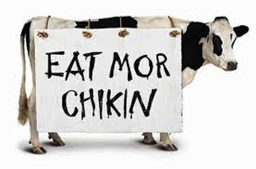 Image result for eat more chicken